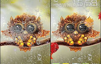Autumn little owl