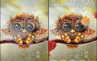 Autumn little owl