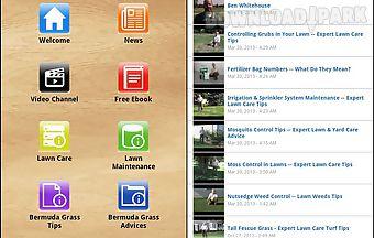 Bermuda grass lawn tips
