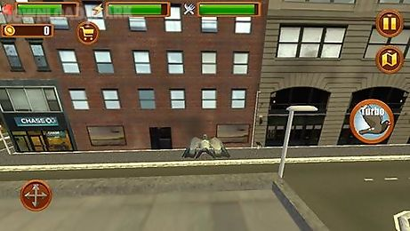city bird: pigeon simulator 3d