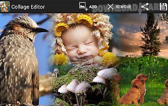 Picmix free , insta collage