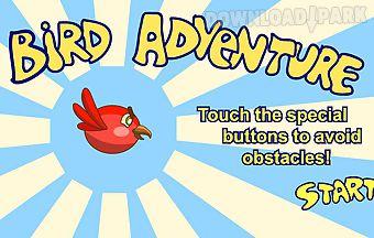 Bird survival game