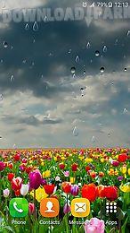 spring rain by locos apps