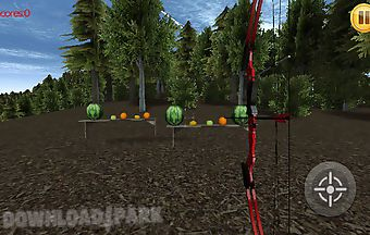 Bow shoot 3d