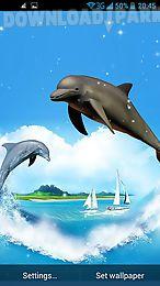 dolphin 3d