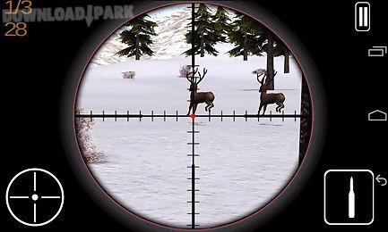hunting animal winter