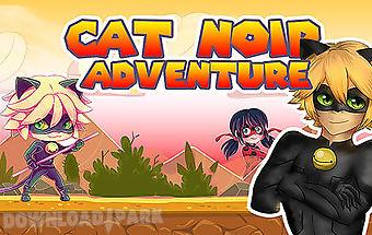 Cat noir miraculous adventure
