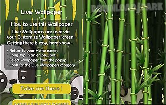 Bamboo garden live wallpaper