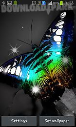 shiny butterfly
