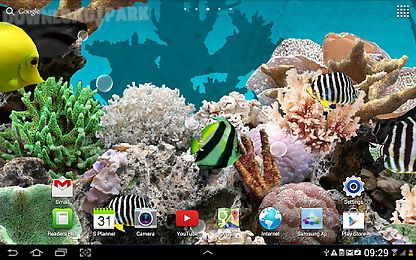 ... 3d aquarium live wallpaper ...