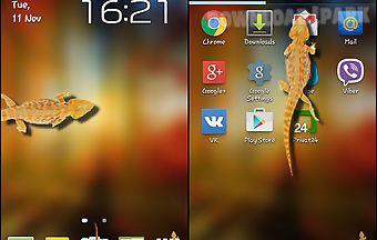 Lizard in phone