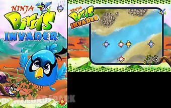 Ninja birds invader