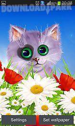spring: kitten