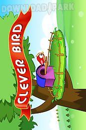 clever bird gold