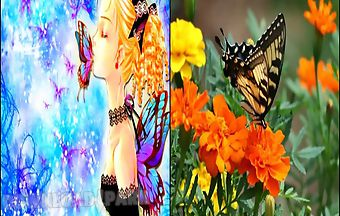 Find differences butterflies