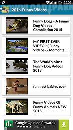funny videos 2016