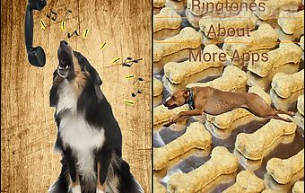 Barking dog ringtones