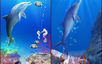 Dolphin and friends trial