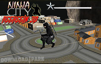 City ninja assassin warrior 3d
