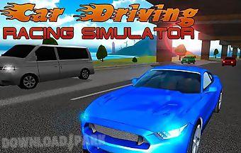 Car driving: racing simulator