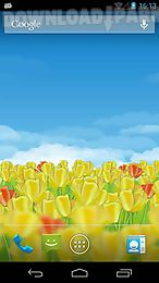 dutch tulips 3d live wallpaper