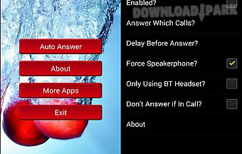 Auto phone answar