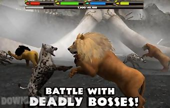Ultimate lion simulator complete..