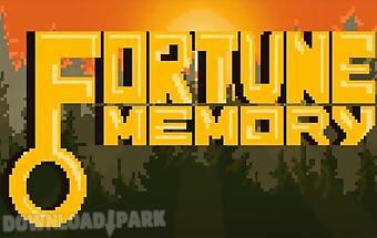 Fortune memory
