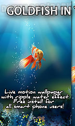 Goldfish in your phone live wallpaper android live wallpaper free goldfish in your phone live wallpaper voltagebd Gallery