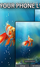 goldfish in your phone live wallpaper