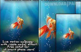 Goldfish in your phone live wall..