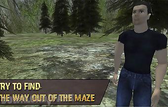 Maze survival free
