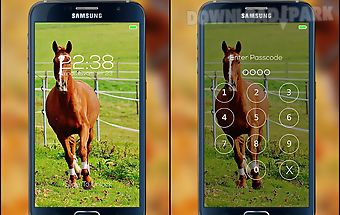 Horse password lock screen