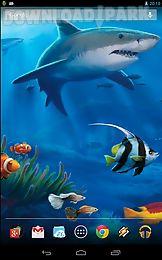 interactive shark