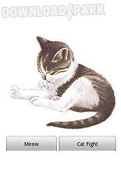 pet me cat