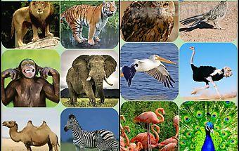 Animal sounds.